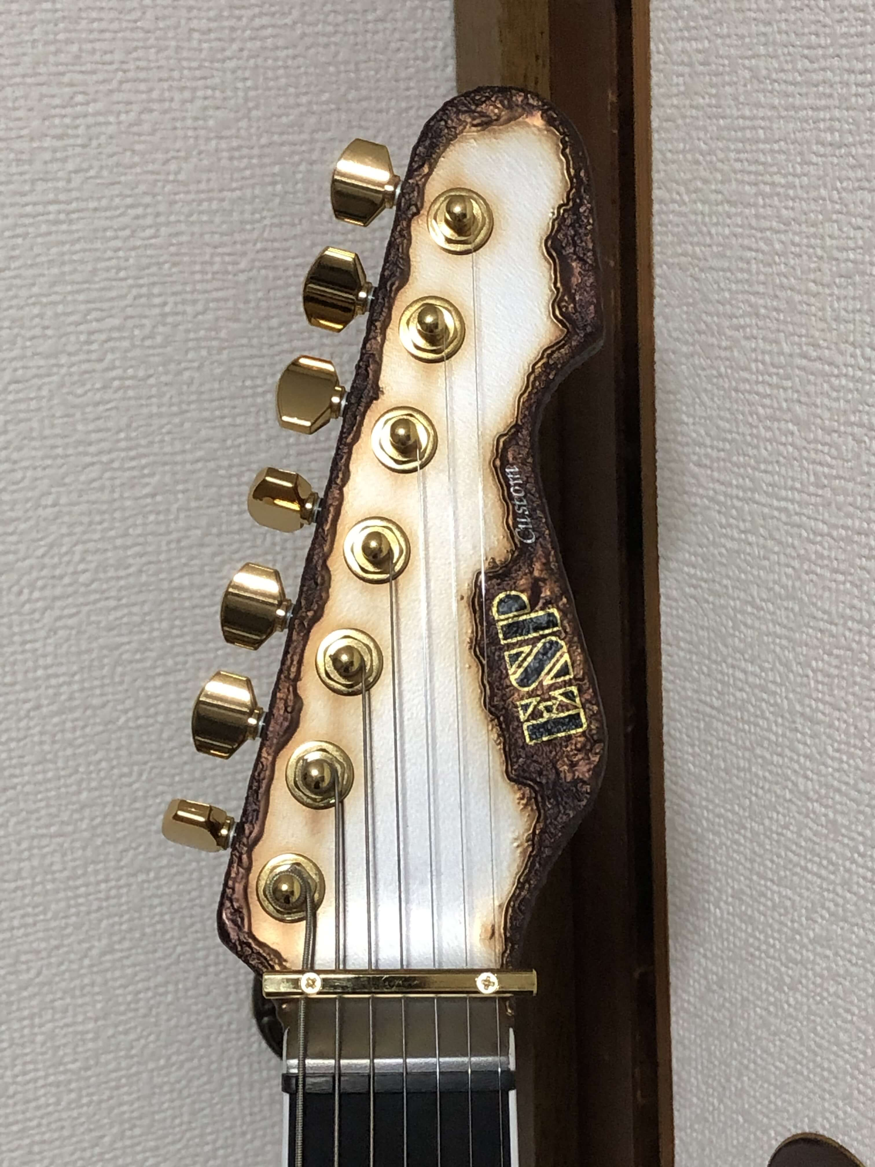 ESP Custom Made Snapper-7Strings